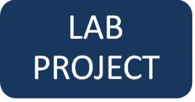 Lab project questionnaire
