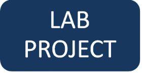 Progetto laboratorio questionario