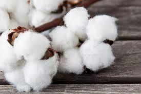 #Laboratori per fibre tessili Branca Idealair