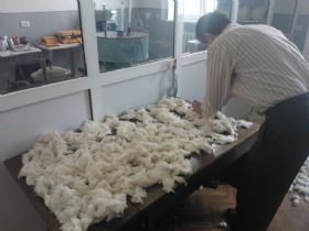Cotton-fiber-preparation